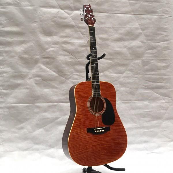 Montana CC10 Dreadnought Guitarra acústica