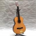 Chateau TGU-90202S Guitarra clásica